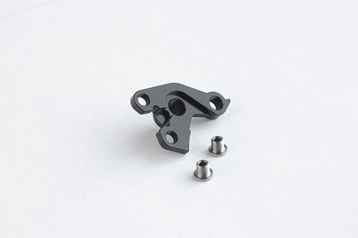 Standard Rando Derailleur Hanger and Single Speed Inserts for Middle Finger Dropout System