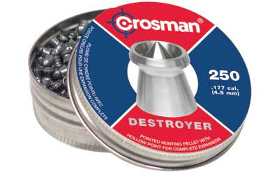 CROSMAN DESTROYER .177 POINT/DISHED