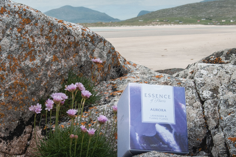 Aurora lavender and ylang-ylang candle on the rocks overlooking the beach
