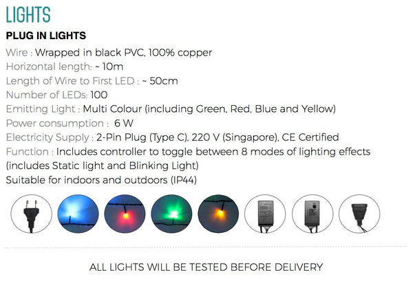 PD String Lights (Multi-Coloured)