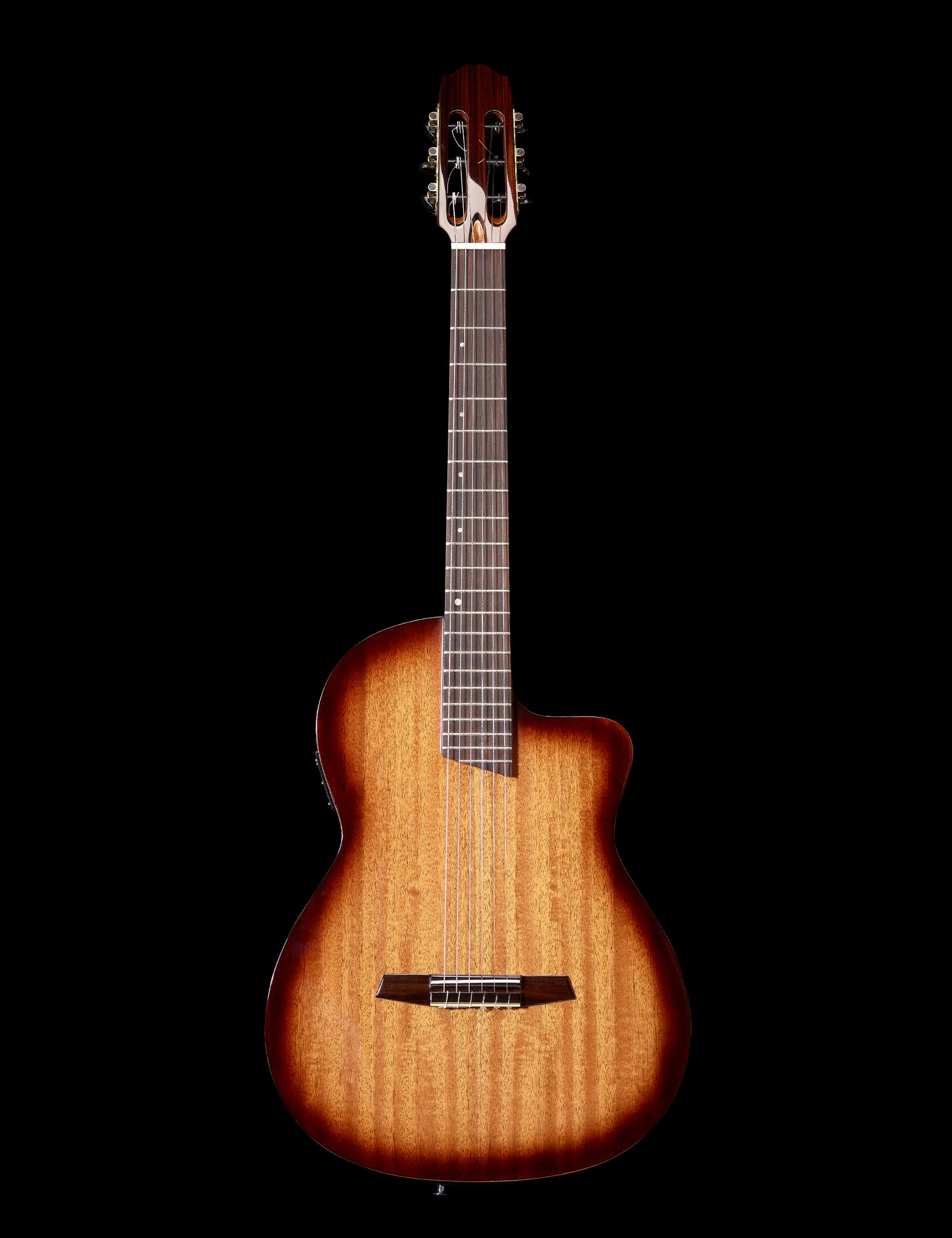 the Tool  Thinline acoustic /electric