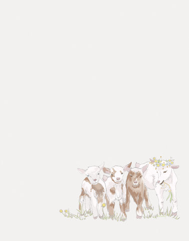 nursery animal goats hannah kang