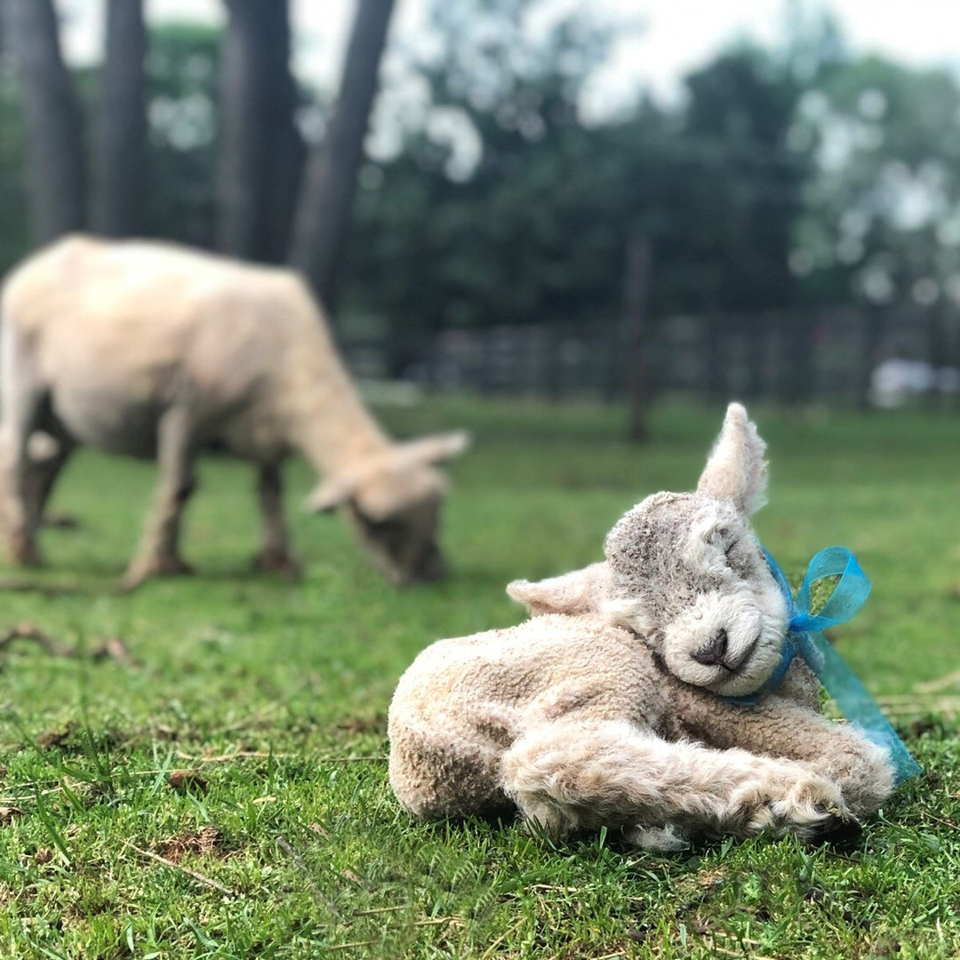 1818 Farms Hosts Virtual Easter Egg Hunt and Farm Tour