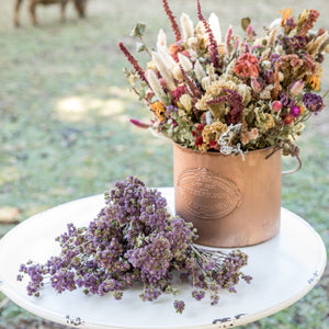 Dried Ageratum Bundle