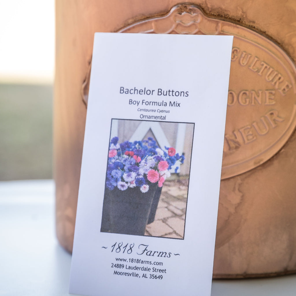 Bachelor Buttons Seeds