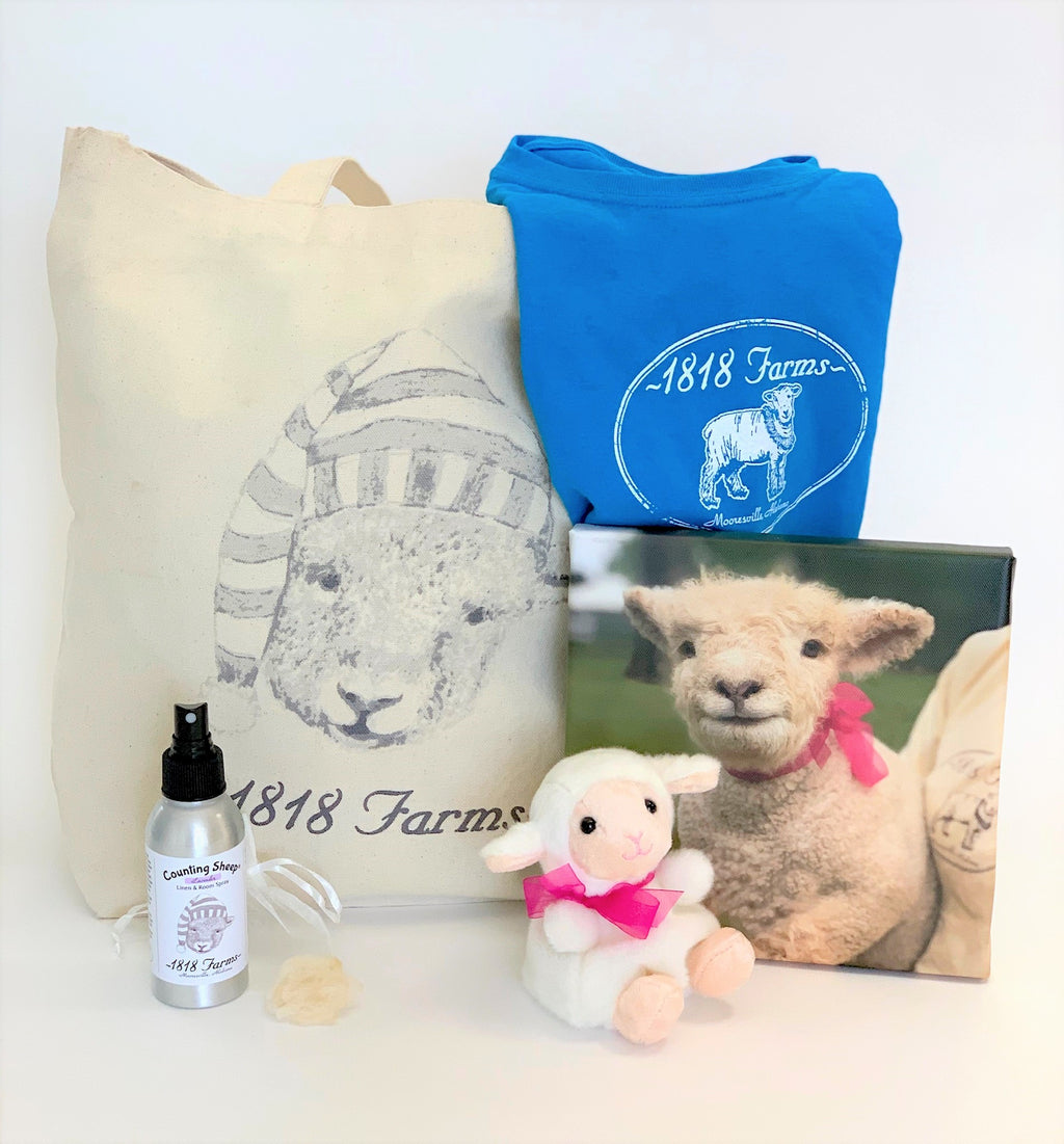 Baby Girl's Adventure at 1818 Farms Gift Set