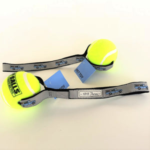 Pet Tennis Ball Toss Toy