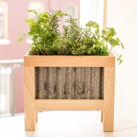 Container Herb Garden Workshop