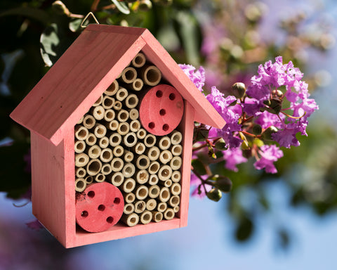 Mason Bee House - Bamboo Tube Bee Hotel for Solitary Bees - Attract More Pollinating Bees to Your Garden by Providing Them With a Bee Home Made from FSC Certified Wood | by Cestari (Pink)