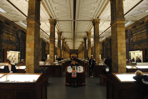 The Natural History Museum Mineral Collection