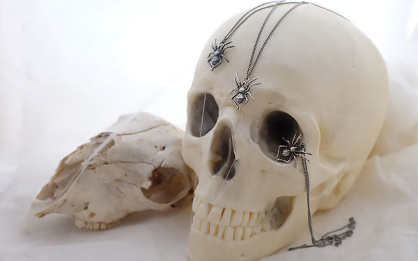 Skull cake and spider jewellery