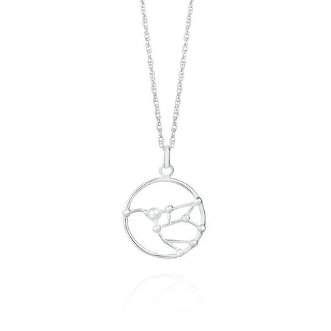 Silver Ursa Major Necklace