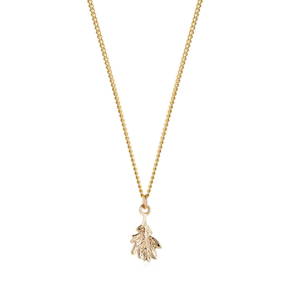 Gold Oak Leaf Necklace - Joy Everley Fine Jewellers, London