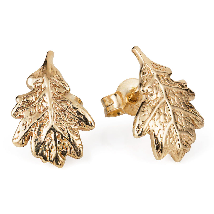 Gold Oak Leaf Ear Studs - Joy Everley Fine Jewellers, London