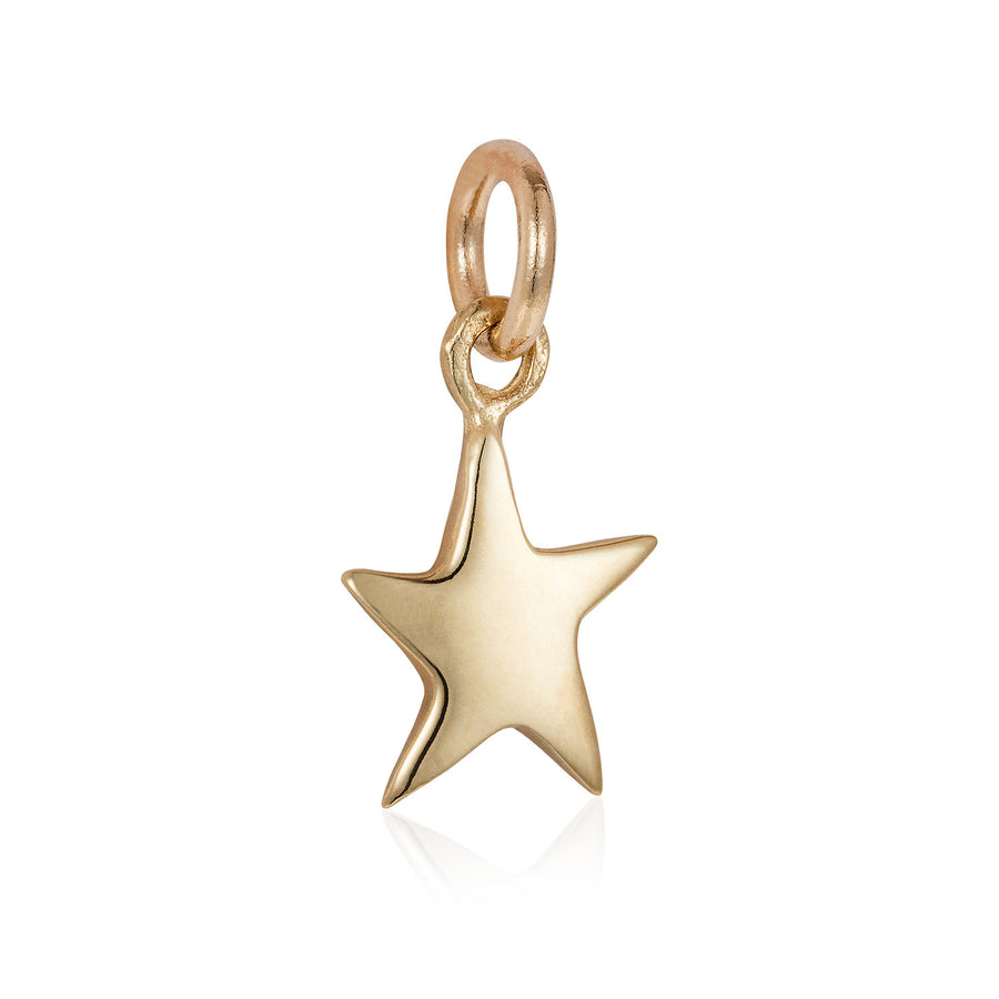 Solid Gold Tiny Star Charm by Joy Everley