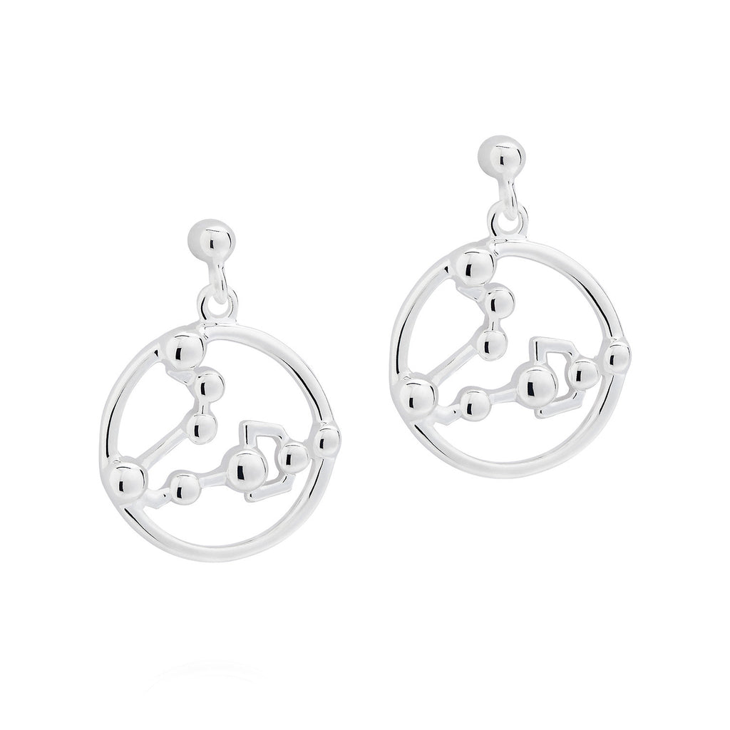 Pisces Astrology Earrings