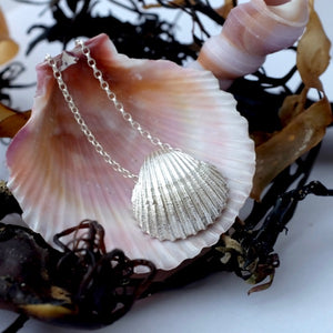 Silver Cockle Shell Necklace by Jennifer Kinnear