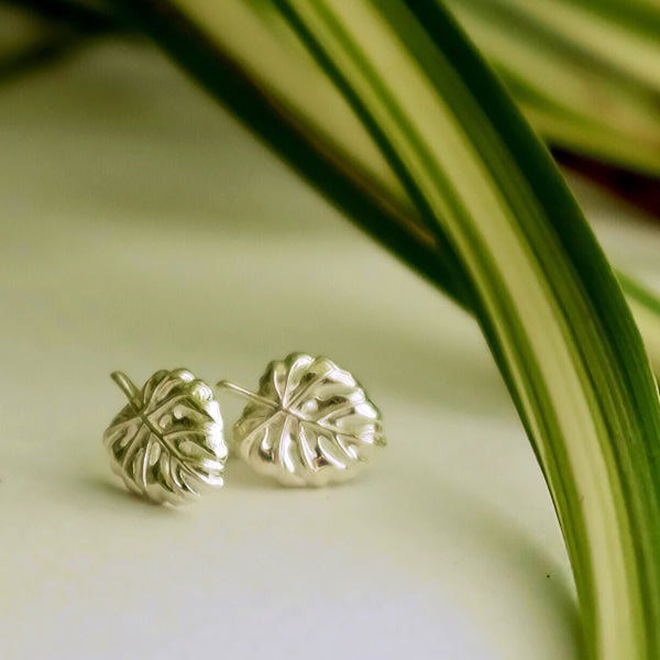 Cheese Plant Leaf Silver or Gold Studs by Joy Everley