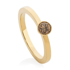 Bespoke Chocolate Diamond Engagement Ring in 9ct yellow gold band