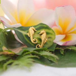Vermeil Seahorse Ear Studs - Joy Everley Fine Jewellers, London