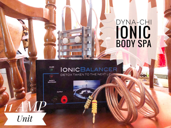 Dyna-Chi Ionic Full Body Detox System (11 Amp) Unit