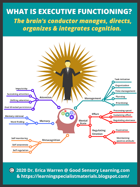web that shows the conductor of the brain, executive functioning, and it's purpose