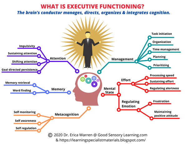 web depicting executive functioning