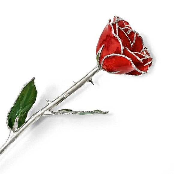 Forever® Rose Red True Love Rose Trimmed in .925 Sterling Silver - Roxx Fine Jewelry
