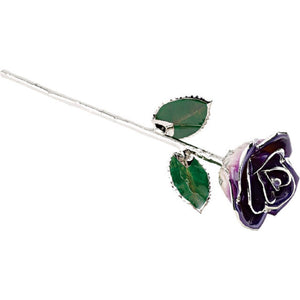 Forever® Rose Deep Purple Rose Trimmed in Platinum - Roxx Fine Jewelry