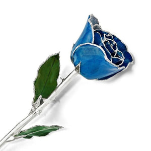 Forever® Rose Blue Peacock Rose Trimmed in Sterling Silver - Roxx Fine Jewelry