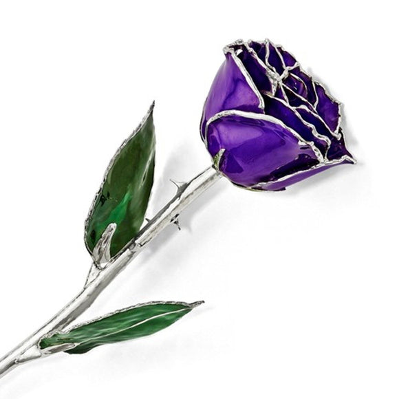 Forever® Rose Purple Violet Rose Trimmed in Sterling Silver - Roxx Fine Jewelry