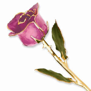 Forever® Rose 24K Gold Trimmed Lilac Rose - Roxx Fine Jewelry