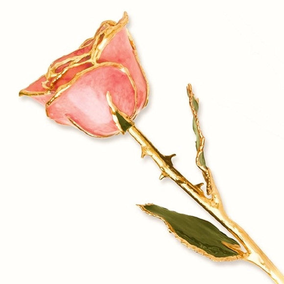 Forever® Rose 24K Gold Trimmed Pink Passion Rose - Roxx Fine Jewelry