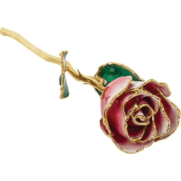 Forever® Rose 24K Gold Trimmed Red & White Frozen Rose - Roxx Fine Jewelry