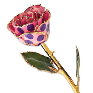 Forever® Rose 24K Gold Trimmed Pink and Purple Polka Dots Rose - Roxx Fine Jewelry