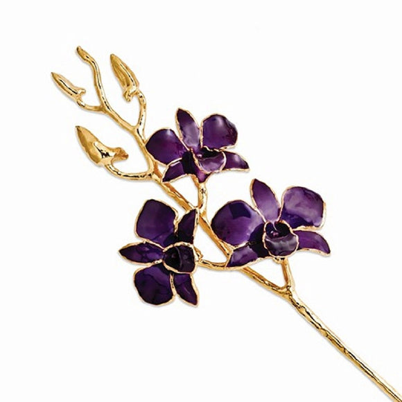 Forever® Orchid Trimmed in 24K Yellow Gold - Roxx Fine Jewelry