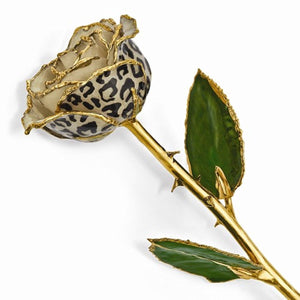 Forever® Rose 24K Gold Trimmed Cream or Pink Leopard Print Rose - Roxx Fine Jewelry