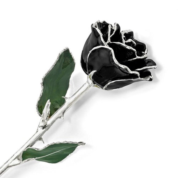 Forever® Rose Silver Trimmed Black Ebony Rose - Roxx Fine Jewelry