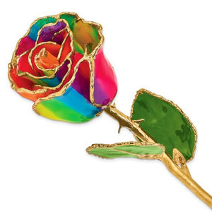 Forever® Rose 24K Gold Trimmed Aurora Neon Rainbow Rose - Roxx Fine Jewelry