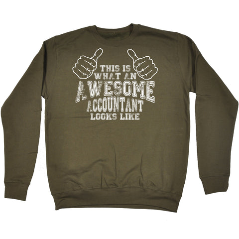 123t This Is What An Awesome Accountant Looks Like Funny Joke Accounting Profession Job Office SWEATSHIRT