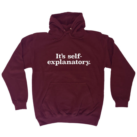 123t It's Self Explanatory Funny Hoodie