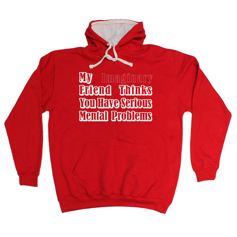 123t My Imaginary Friend Thinks You Have Mental Problems Funny Hoodie