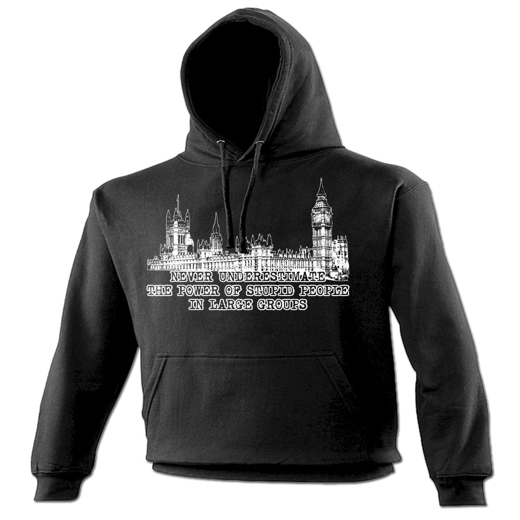 123t Never Underestimate The Power Of Stupid People In Large Groups Funny Hoodie