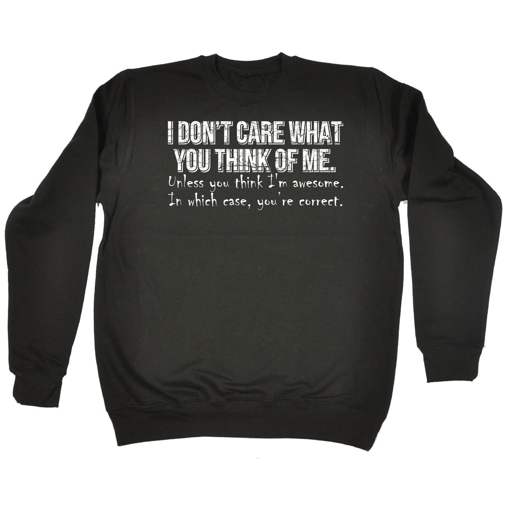 123t I Don't Care What You Think Of Me You're Correct Funny Sweatshirt