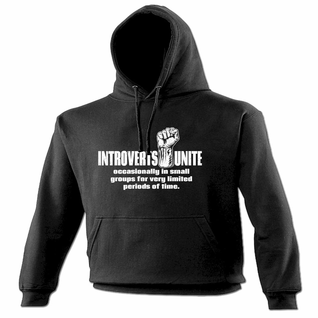 123t Introverts Unite Occasionally In Small Groups Limited Periods Of Time Funny Hoodie