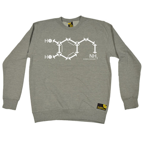 SWPS NH2 Chemical Formula Sex Weights And Protein Shakes Gym Sweatshirt
