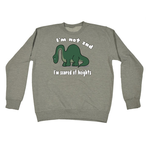 123t I'm Not Sad I'm Scared Of Heights Dinosaur Design Funny Sweatshirt