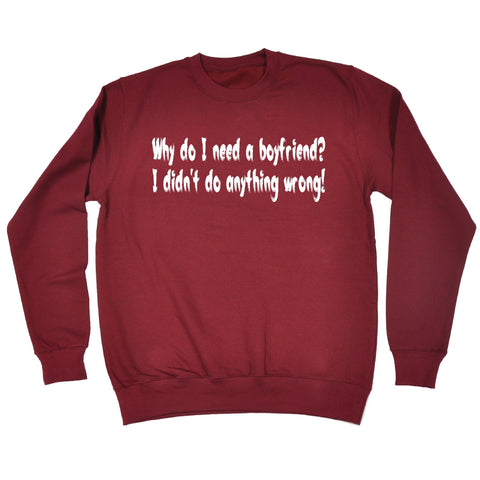 123t Why Do I Need A Boyfriend I Didn't Do Anything Wrong Funny Sweatshirt