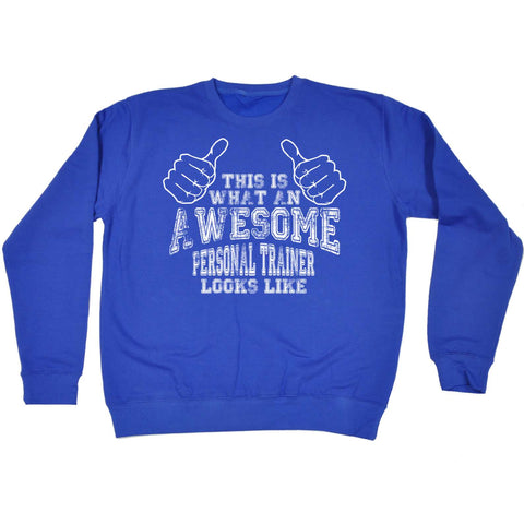 123t - This Is What An Awesome Personal Trainer Looks Like - Gym Bodybuild Train - PREMIUM COTTON SWEATSHIRT