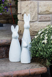 White  Wide Bunnies